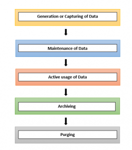 Stages of Data Lifecycle Management