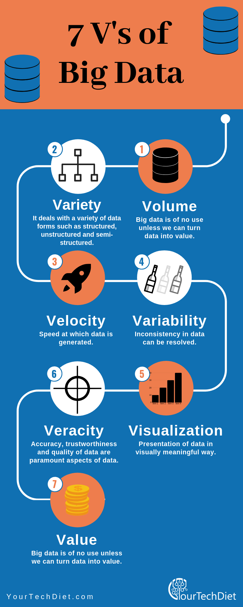 7 V's of Big Data Infographic