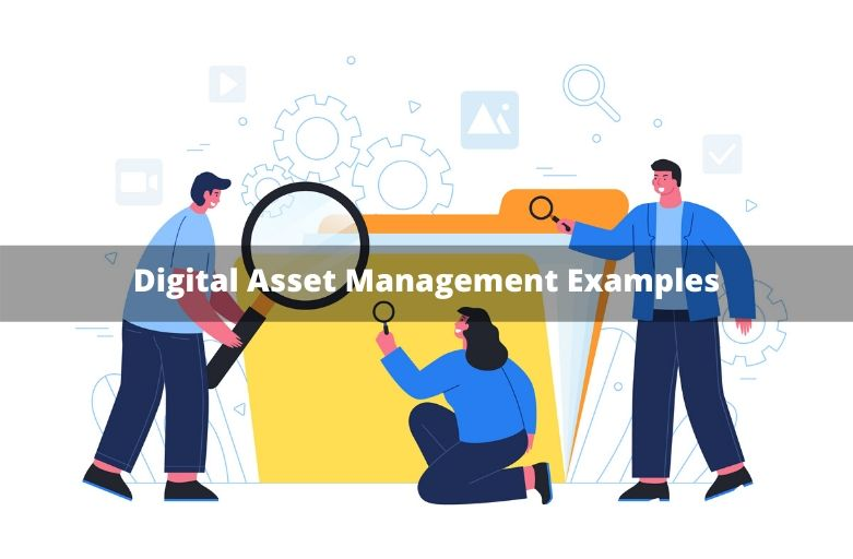 Digital Asset Management Examples
